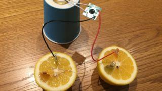 10分で終わる自由研究 中学生理科実験簡単
